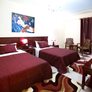 deluxe-tween-room-orchidea hotel